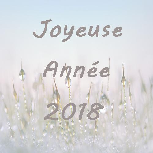 bonne année 2018 bougie wabi sabi